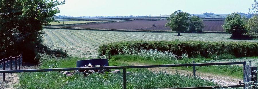 View across recently cut fields